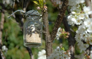 Apothecary Jars Hanging Decor