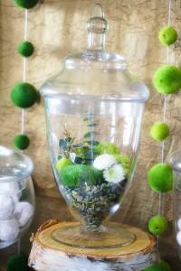 Apothecary Jars Terrarium