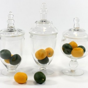 Set-of-Three-3-Mini-Clear-Glass-Apothecary-Jars-Filled-with-Decorative-Artificial-Lemon-and-Limes-Home-Decor-Canisters-Set-0