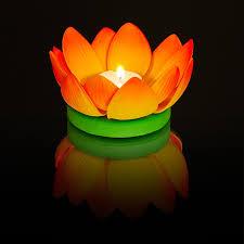 Flower Lantern on Water