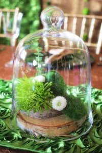 Table Centerpiece